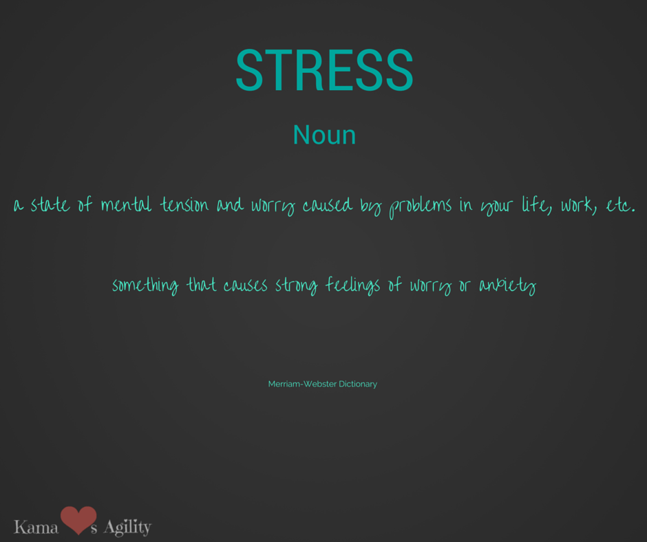 Are you stressed?  Is your dog stressed?  How to recognize and relieve stress.
