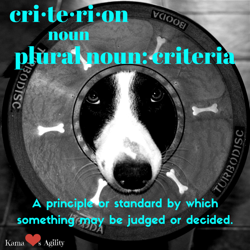What is the definition of criteria? | KamaLovesAgility.com